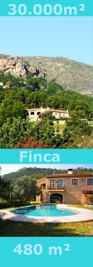 Puerto Andratx 30.000 m² Landbesitz Finca Villa Steinhaus mit Patio 3 Minuten zum Yachtclub